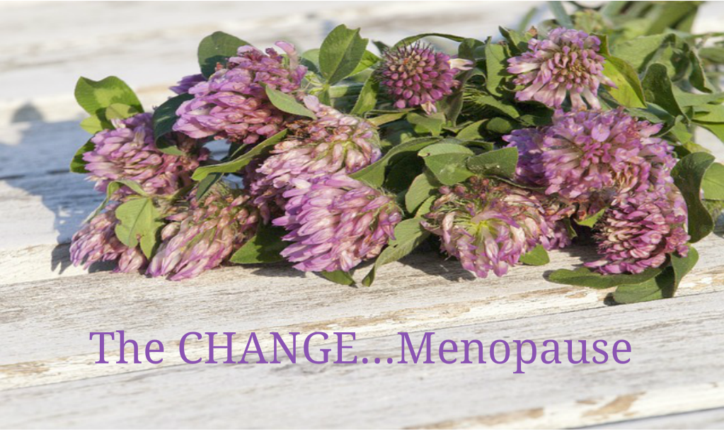 THE CHANGE! MENOPAUSE